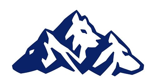 类的logo设计-logo设计,服务设计-基础零水源模具设计视频图片
